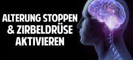 Alterung stoppen | Zirbeldrüse aktivieren | Denkleistung erhöhen – Prof. Dr. Dr. Enrico Edinger