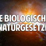 Jede Krankheit ist heilbar – Die biologischen Naturgesetze