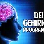 Programmiere Dein Gehirn neu