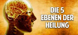 Jede Krankheit hat eine Ursache – Die 5 Ebenen der Heilung – Dr. Dietrich Klinghardt