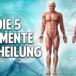 Die 5 Elemente der Heilung: Die besten Heilpflanzen-Rezepturen unserer Erde – Dr. Ingfried Hobert