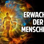 Erwachen der Menschheit: Wie Du Dich als reines Schöpferwesen erkennst – Gerhard Vester