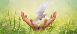 HUNA: Heilwissen und Lebensgefühl, Seelenkraft und Lebensglück