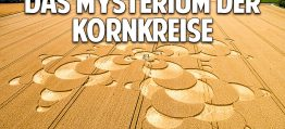 Botschaften aus dem Universum: Das Mysterium der Kornkreise