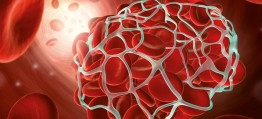 Dein Blut lügt nicht:  Was die Dunkelfeldmikroskopie alles verraten kann