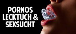 Pornos, Lecktuch & Sexsucht: Die schockierende Wahrheit – Sexualtherapeutin packt aus!