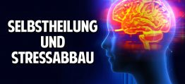 Selbstheilung aktivieren, Stressabbau & Entspannung  – Was Du über Meditation wissen musst