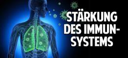 Stärkung des Immunsystems mit der Heilkraft der Natur – Die geheimnisvolle Kraft der Blaubeere