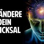 Verändere Dein Schicksal: Entschlüssle den Code Deiner Genialität mit der Brainupdate Methode!