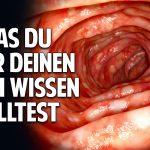 Was Du über Deinen Darm wissen solltest