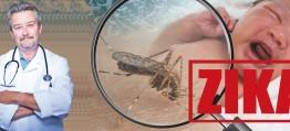 ZIKA–Virus – Die unglaubliche Wahrheit