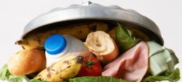 Frisch auf den Müll – Die globale Lebensmittelverschwendung