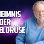 Das Geheimnis der Zirbeldrüse: Öffne das Tor zu Deinem Bewusstsein – Dieter Broers