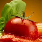 Gesunde Ernährung verzichtet bewusst auf tierisches Eiweiß