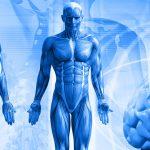 Der Feind in meinem Körper – Wenn Lebensmittel krank machen